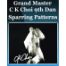 CK Choi Sparring Patterns DVD